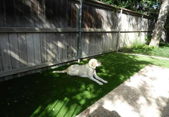 Washable turf for dogs